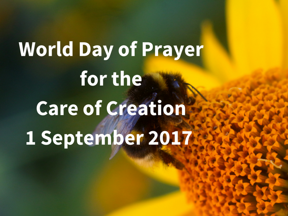 World-Day-of-Prayer-for-the-Care-of-Creation1-September-2017.png