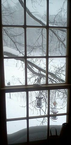 006b9572e0d3071bf701c149d2ec55f8--through-the-window-winter-photography.jpg