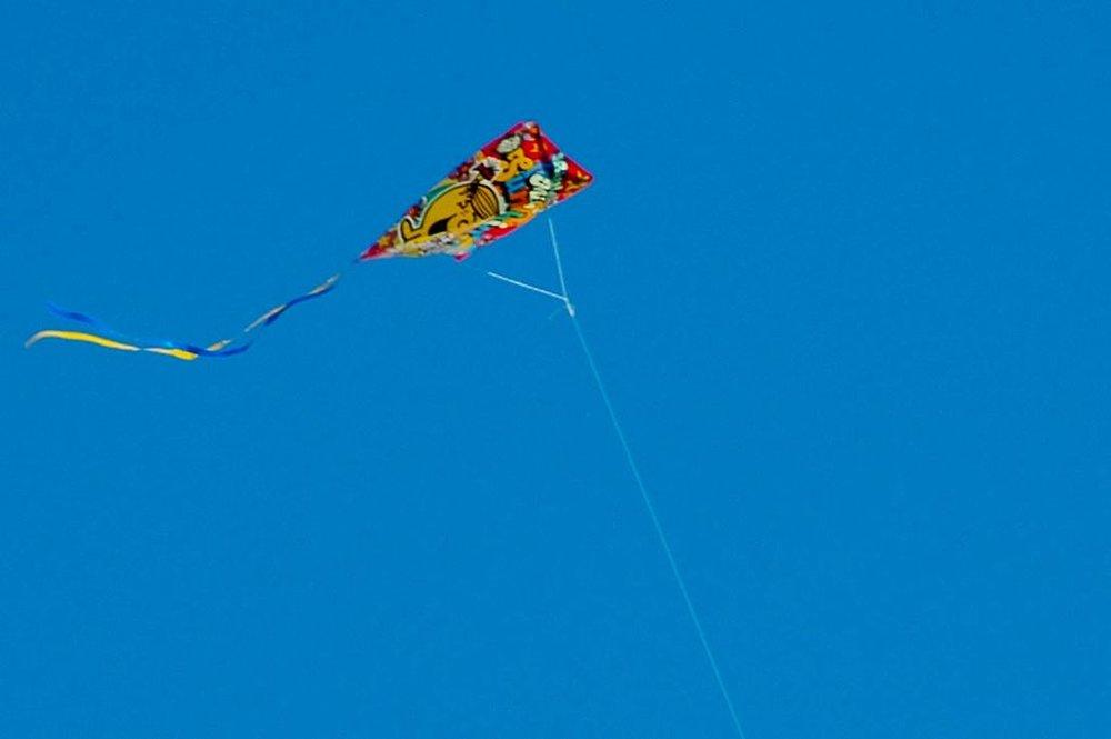 A_kite_flying_at_Basant_Panchami_festival_2.jpg