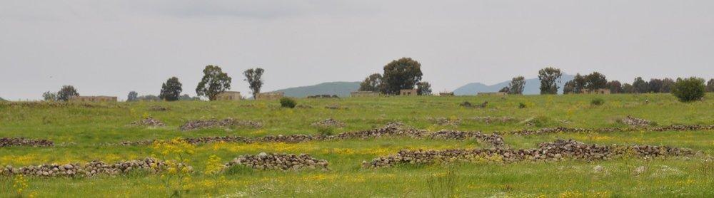 cropped-golan-landscape.jpg