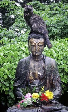 http---spiritblogger.files.wordpress.com-2010-06-smiling-buddha-with-cat.jpg