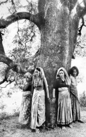 Hindu women of  India's Chipko movement .