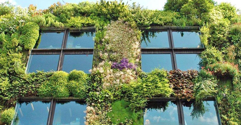 Paris urban sprout. Image Source:    Inhabitat