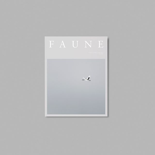 We're thrilled to announce our latest partnership with startup independent wildlife, travel and lifestyle magazine @faunemag! Faune launches in October and is available to pre-order now. Head to faune.co to order your copy! ********** #indiemagazine #independentmagazines #forthecreatures #indiepublishing #printlovers #naturewriting #travelwriting #wildlifemagazine #inspiredbynature #magazinecover #coffeetablemags #magazinedesign #yearofthebird #minimaldesign #wildlifephotography #pr #comms #conservation #travelmagazine #lifestylemagazine #travelphotography #conservationcomms #agency