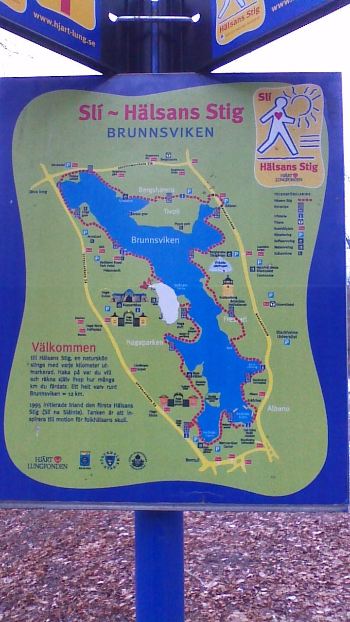 The map of the lake