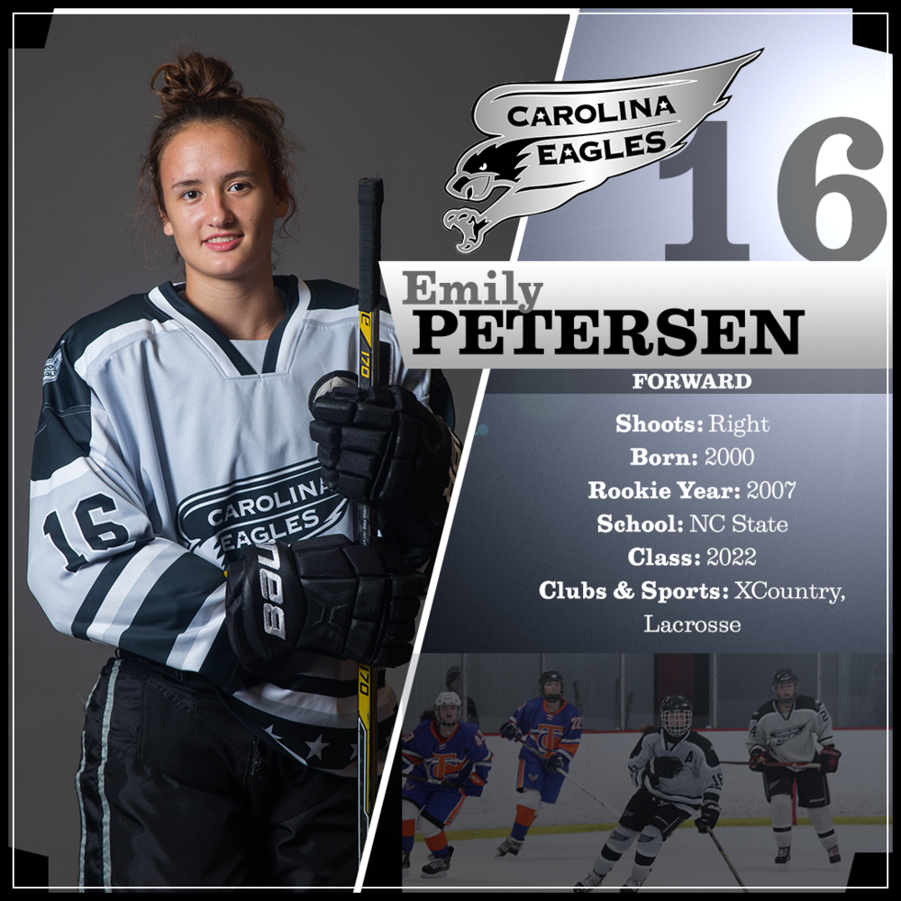 16-Petersen.png