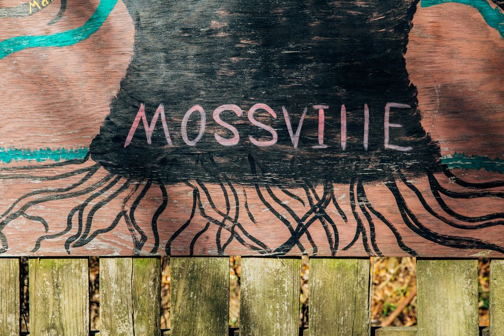-CR0A0102_MOSSVILLE_TREES.jpg