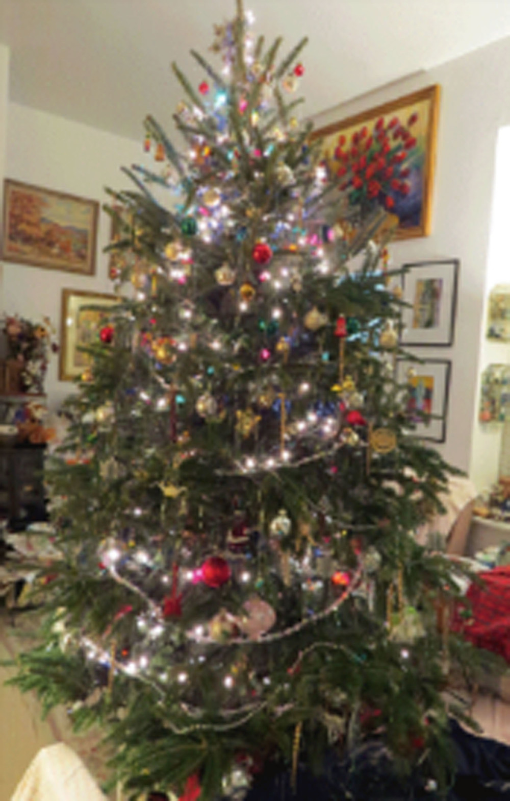 Merry Christmas 2014!! — Susan Kirby