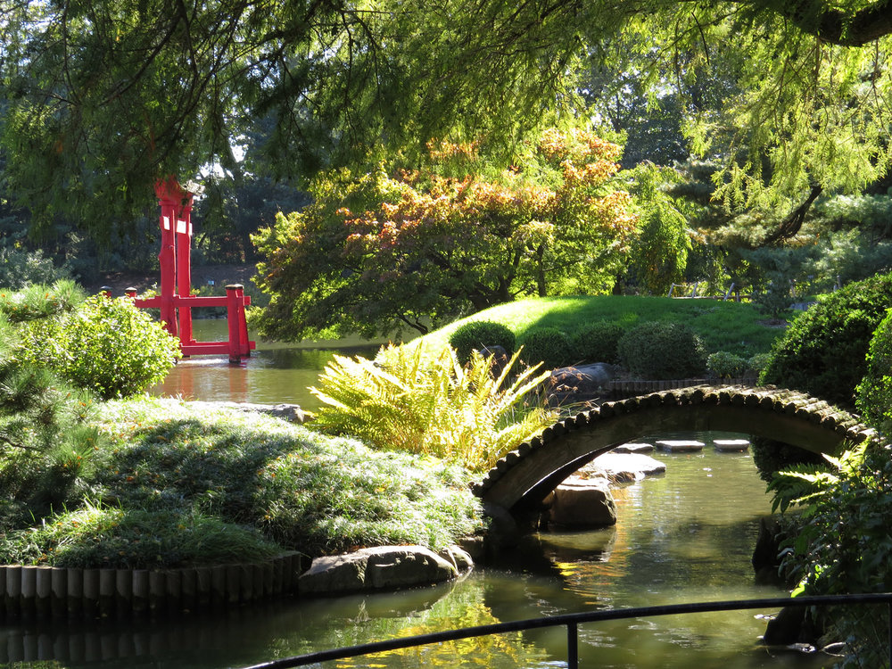 Japanese Hill-and-Pond Garden, Brooklyn Botanic Garden, Oct. 11, 2016