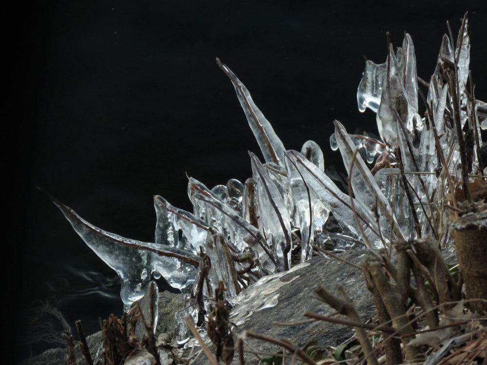 Ice 1500 1-14-2019 117P.jpg
