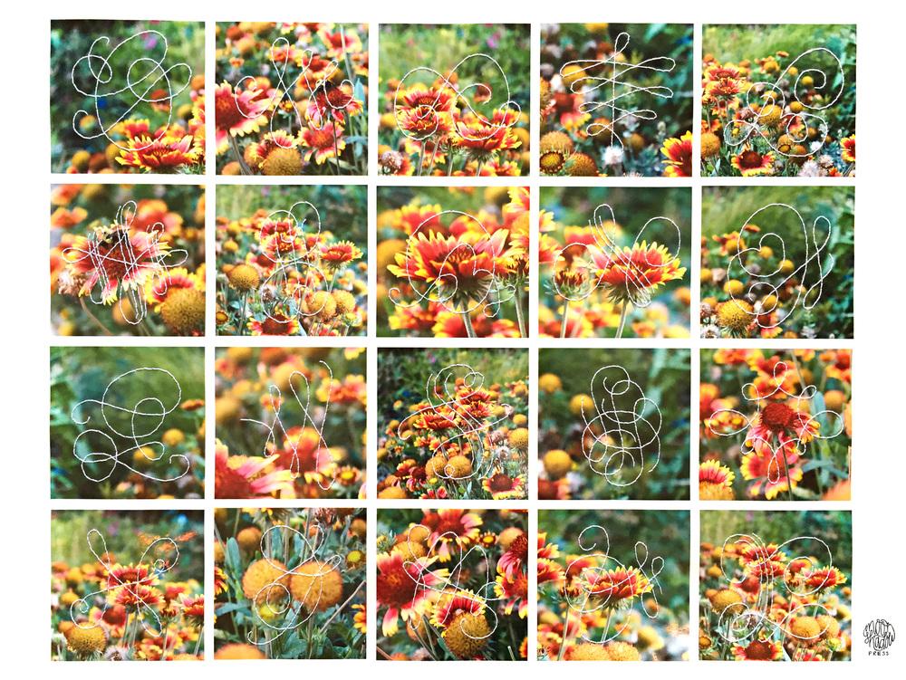 C_FlowersFiligree1_L.jpg