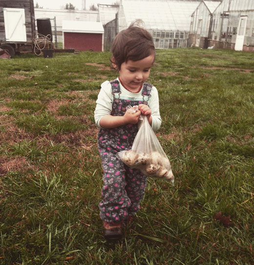 A visit to the farm helps children connect with the origins of their food.