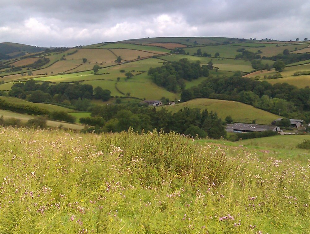 The Redlake Valley, south Shropshire