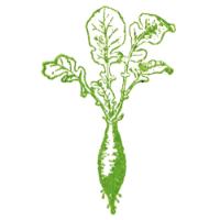 Radish logo.png