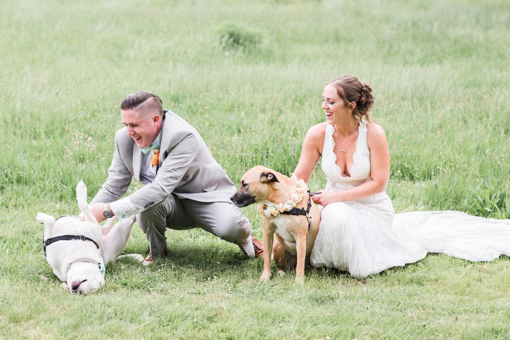 Olivia-Justin-Friel-Wedding-347.jpg