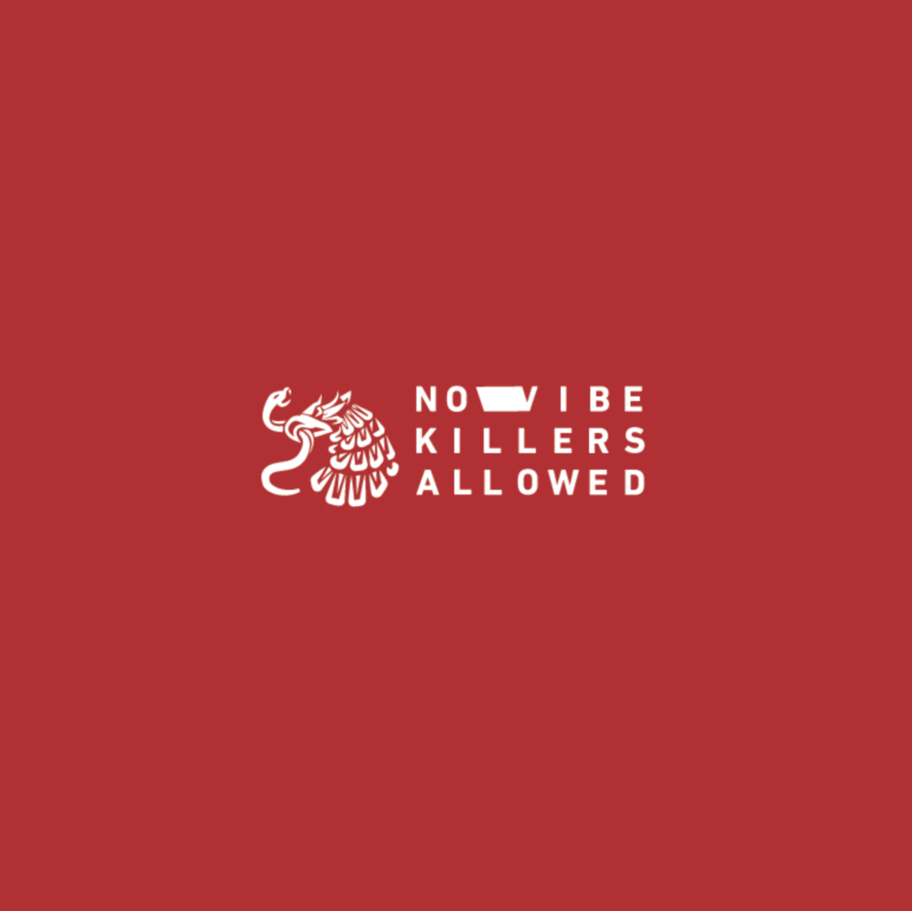 fernando sez no vibe killers allowed.png