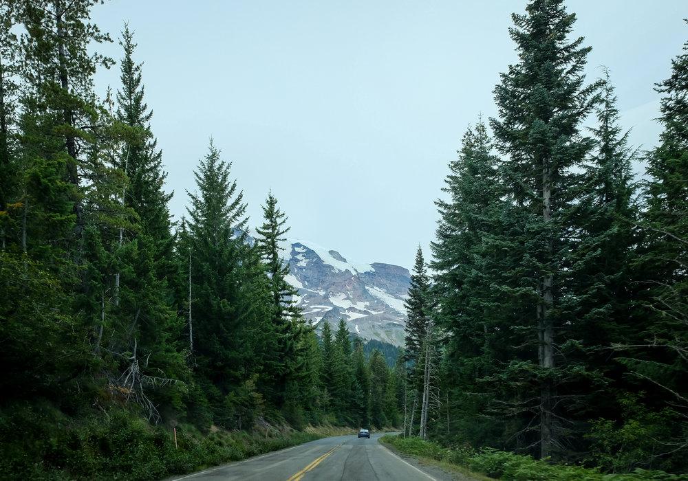 rainier-road.jpg