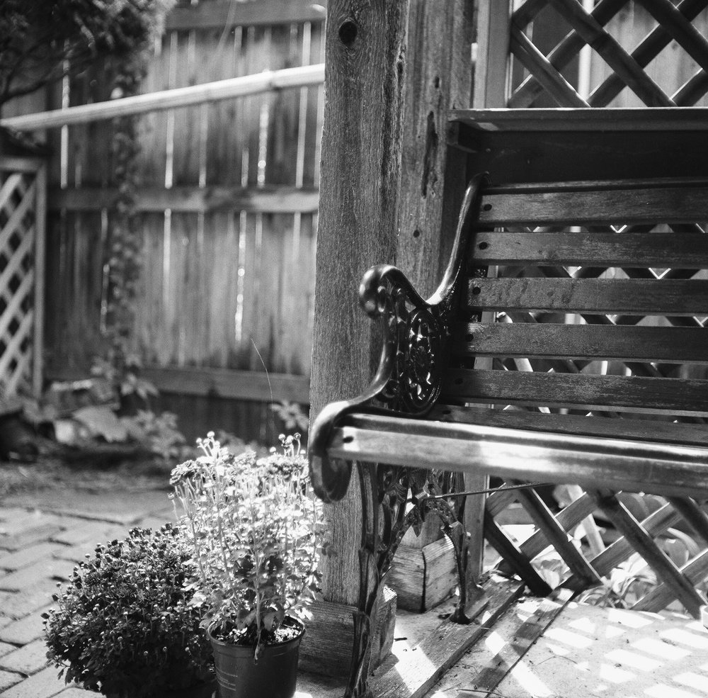 2) bench in morning light, home. rolleicord iv & kodak tri-x 400 pushed +1, the darkroom lab.