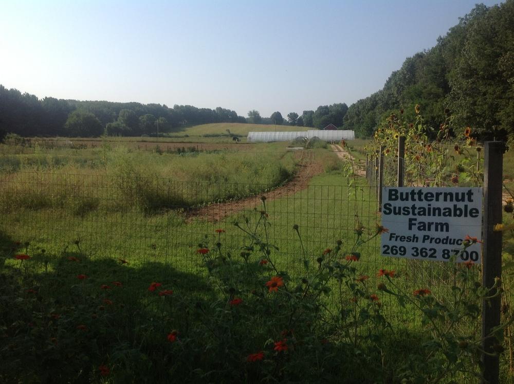 Butternut+Sustainable+Farms,+Sturgis,+Michigan.jpg