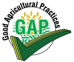 Good Agricultural Practices - What: GAP involves voluntary audits that verify that fruits and vegetables are produced, packed, handled, and stored as safely as possible to minimize risks of microbial food safety hazards.How Many of our Farmers are Certified: 4