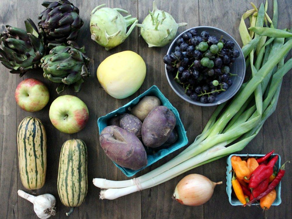 Artichokes, Kohlrabi, Concord Grabes, Green Onions, Hot Peppers, Onion, Potatoes, Heirloom Melon, Delicata Squash, Garlic, Honeycrisp Apples