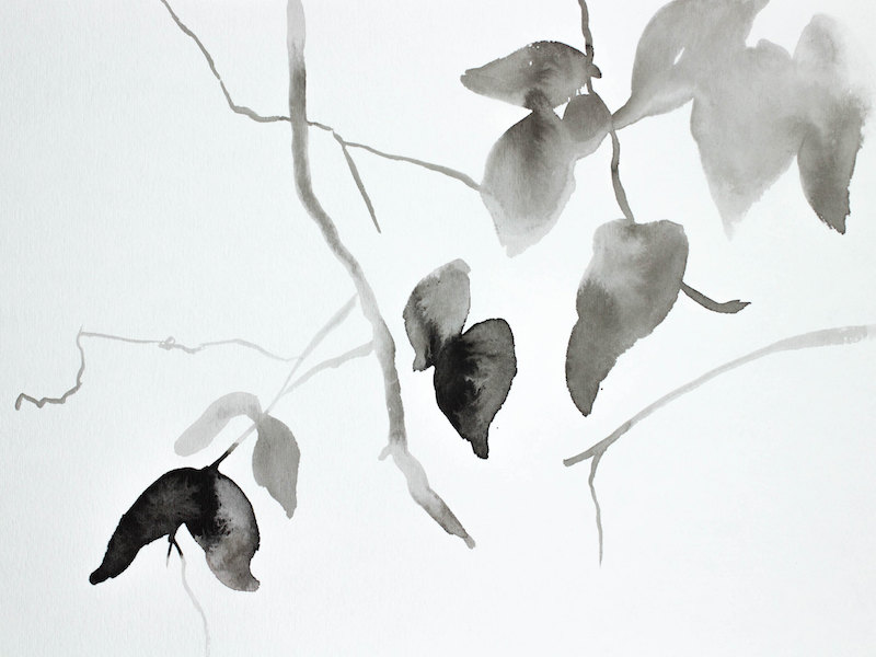 Hanging Leaves No. 1
