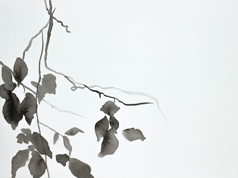 Hanging Leaves No. 4