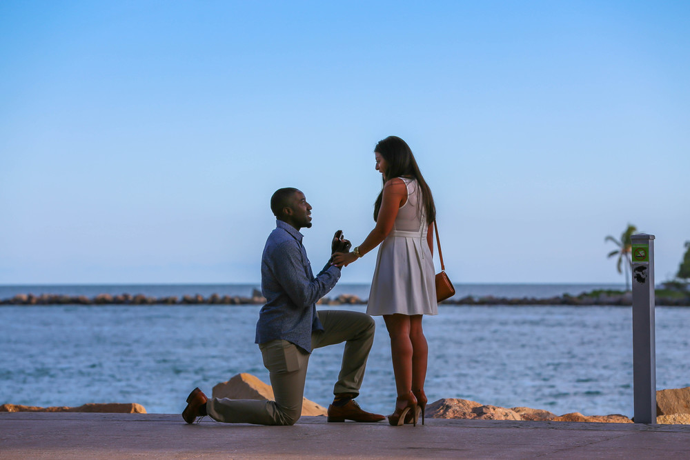 NIKHIL & JACKIE JOHNSON: PROPOSAL & ENGAGEMENT