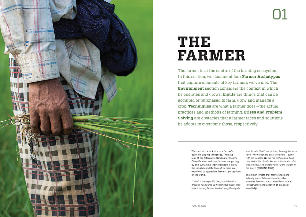 The Farmer.jpg