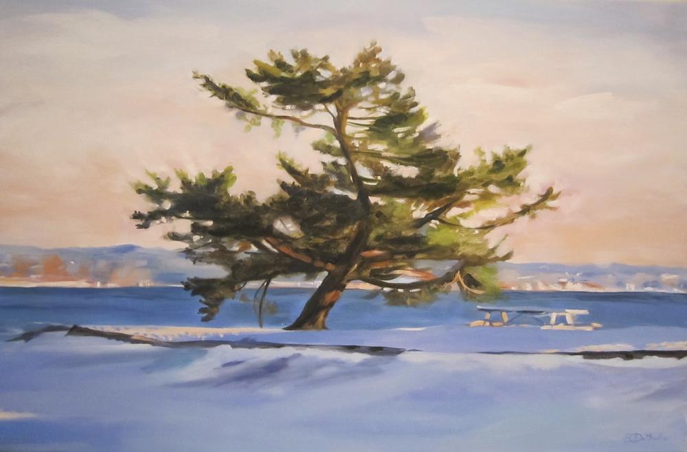 Quiet Tree Shenorock Rye NY