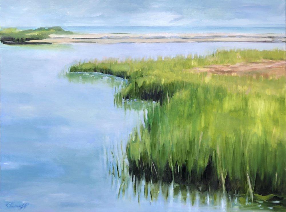 Quiet Inlet, Marshlands