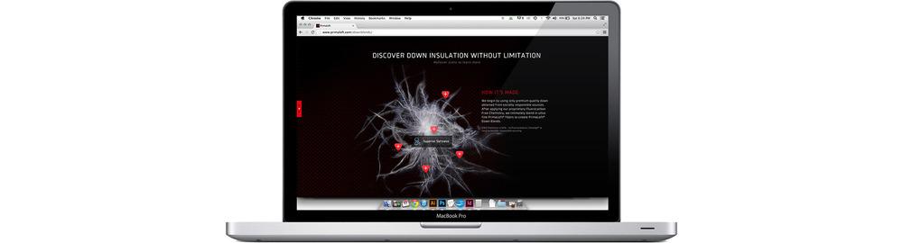 downblendweb_3_o2.jpg