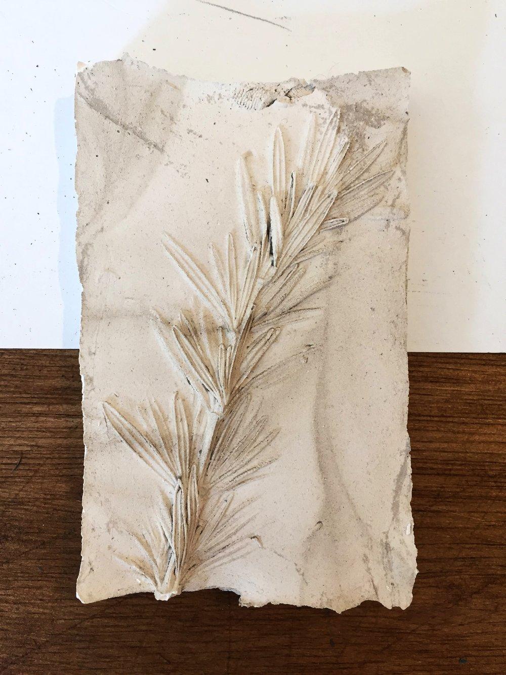 Rosemary cast test-sample