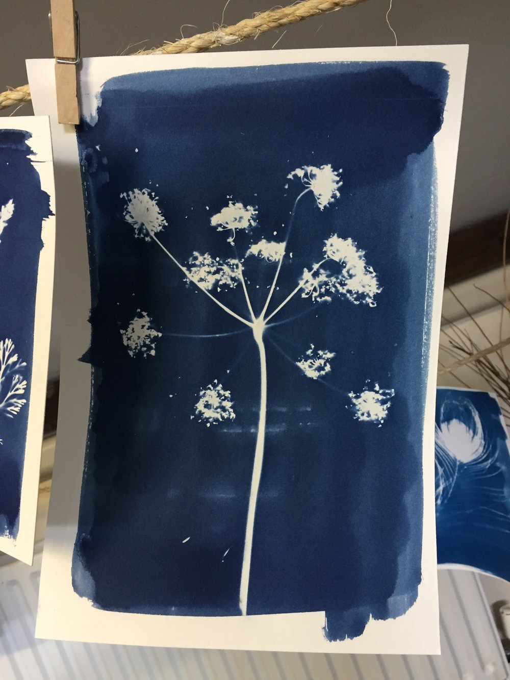 Booking includes a starter kit