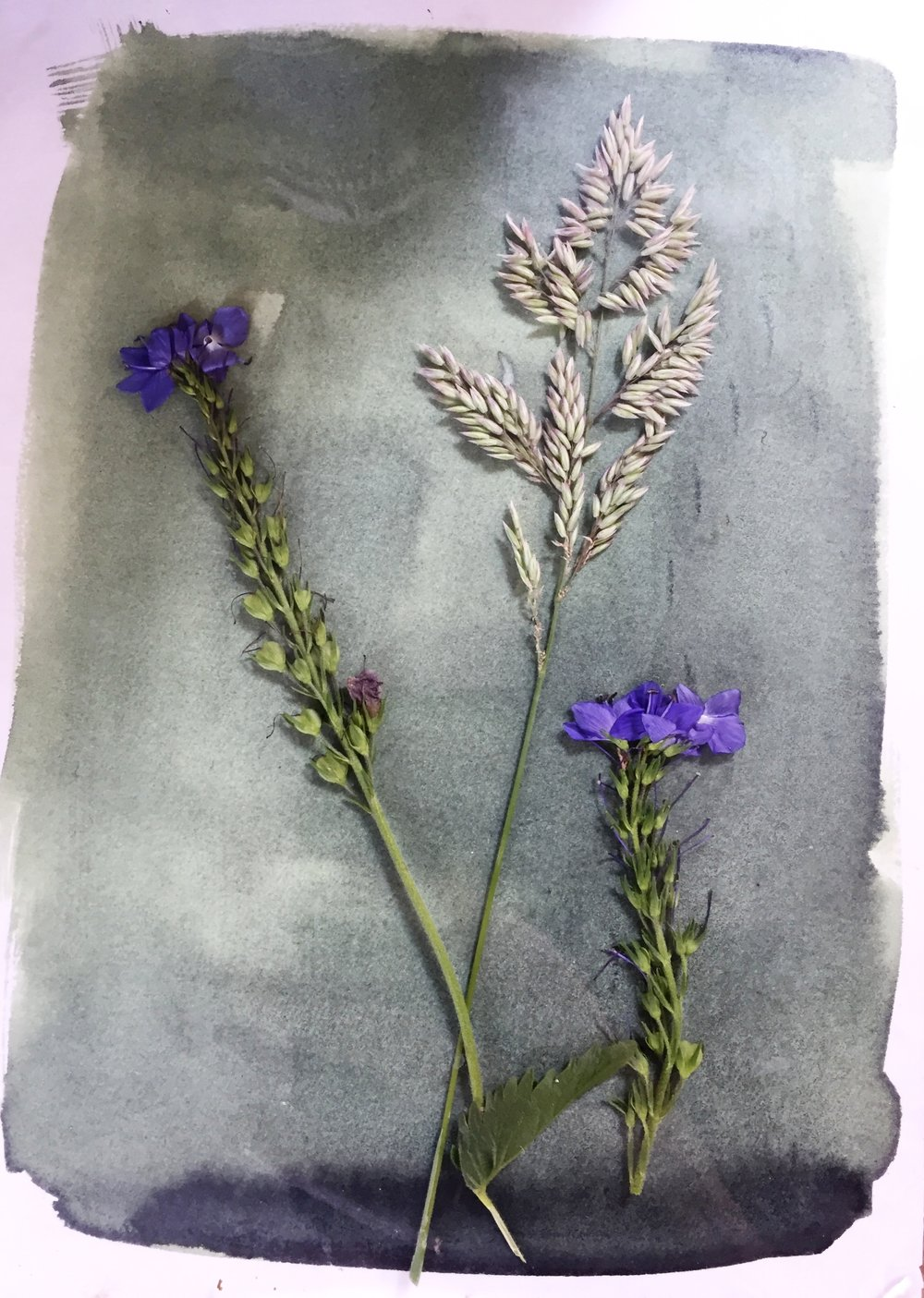 Mix chemicals to create a light sensitive solution