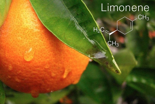 Limonene website.jpg