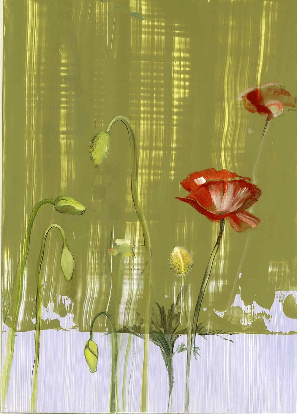 Poppy oil on panel 5x7, 2005
