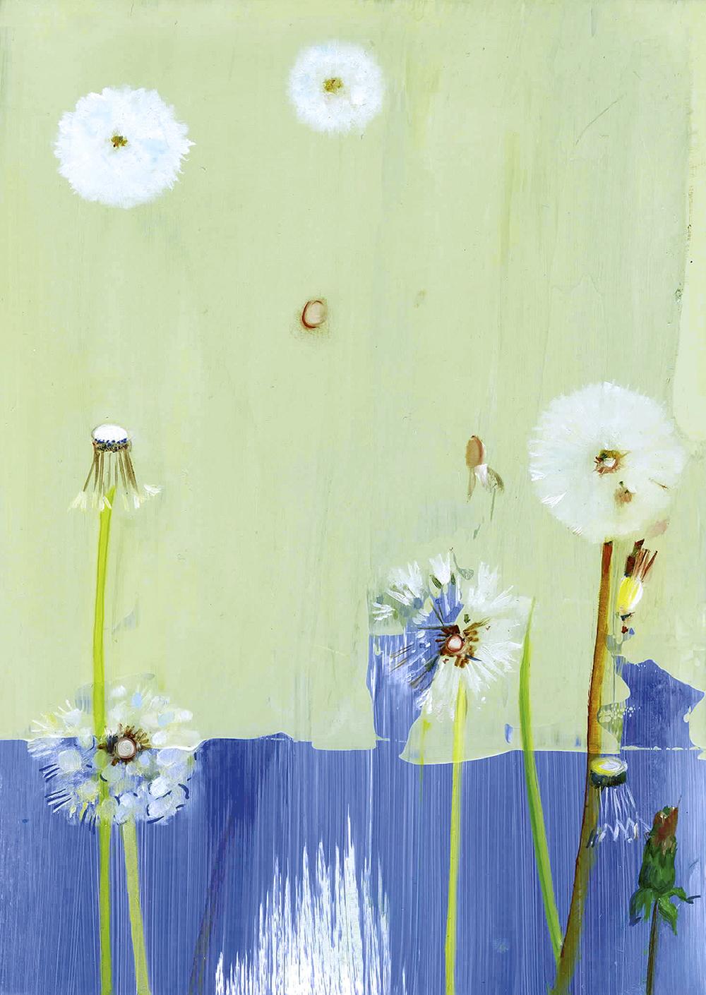 "Dandelions  oil on panel 7""x5""2005"