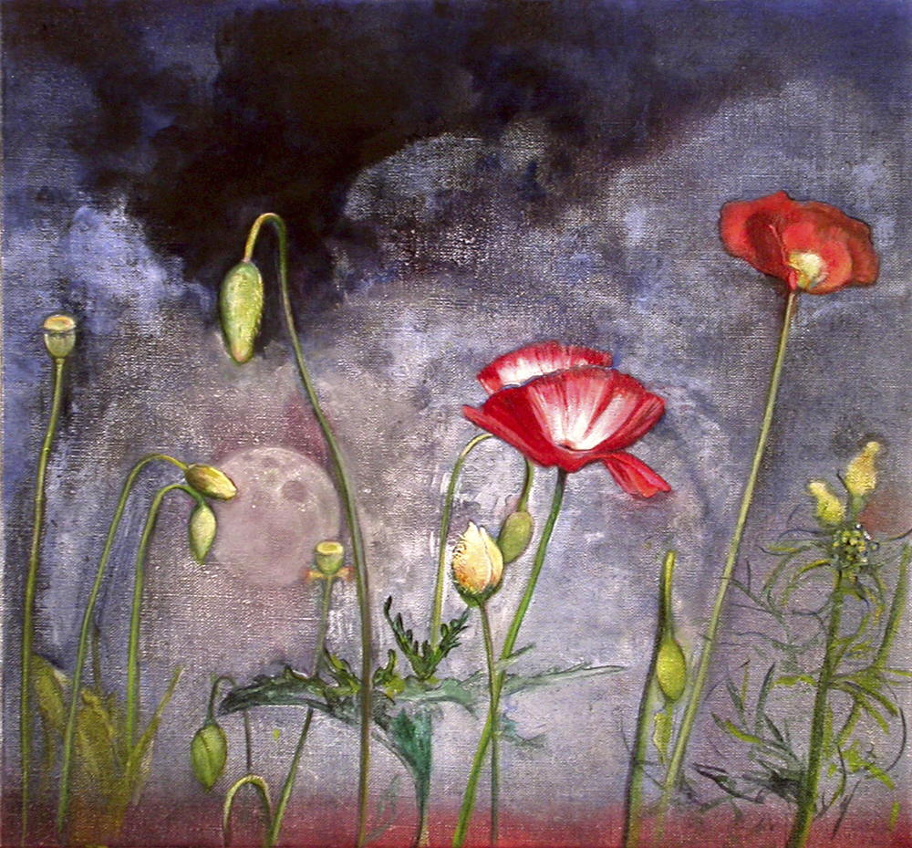 "Night Poppy  oil on linen 13""x14"" 2005"