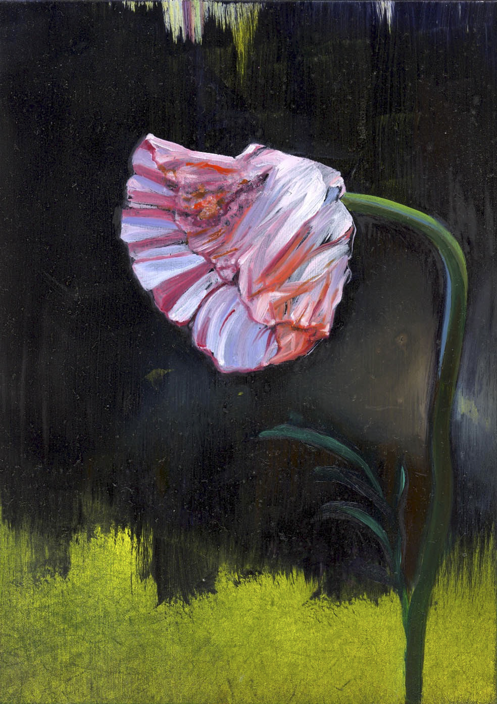 "Poppy  oil on panel 7""x5"" 2007"