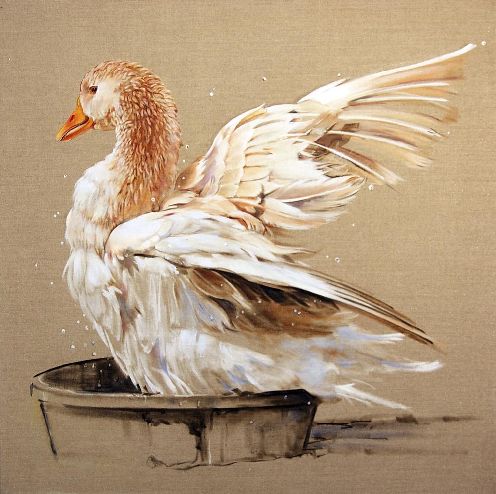 "Duck 3  oil on linen 26""x22""2011"