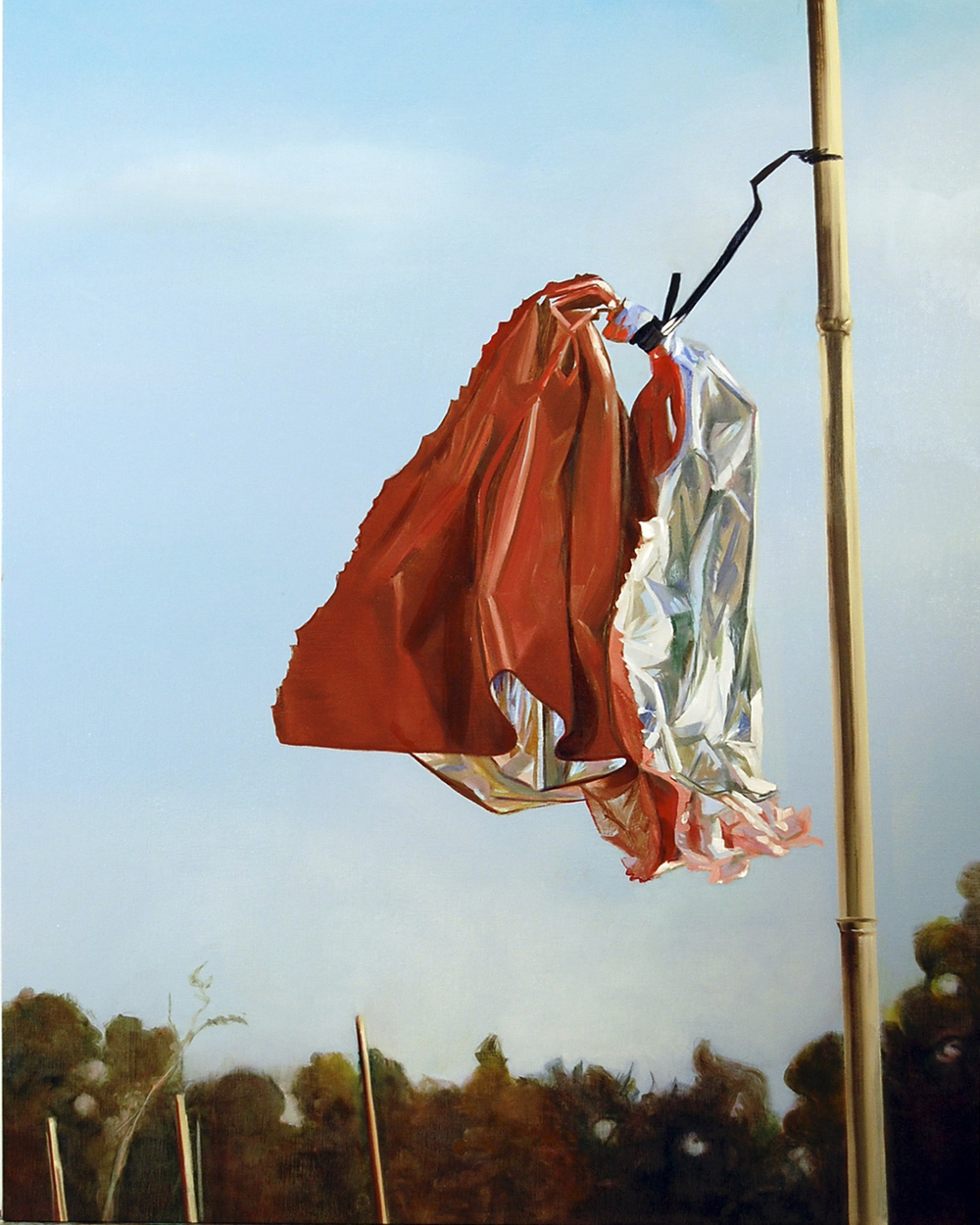 "Flag  oil on linen 32""x24"" 2010"