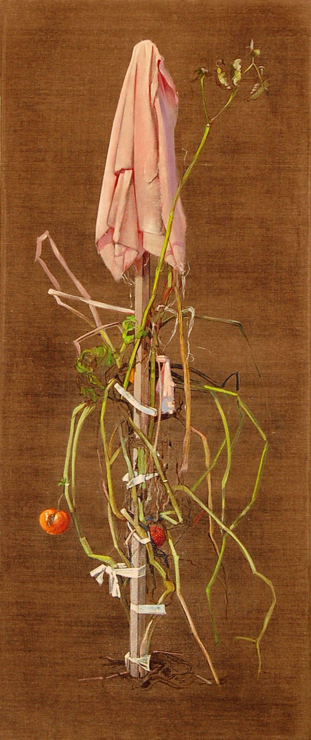 27) Tomato  Plant 2009 22x52 oil on linen.jpg
