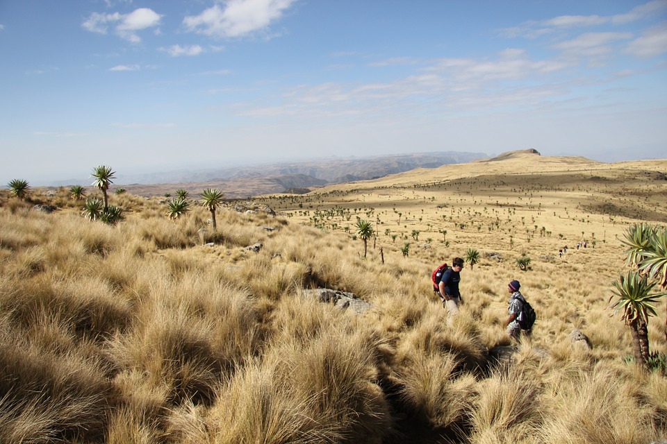 Hike in Ethiopia? - Send request and get quotes from our local experts