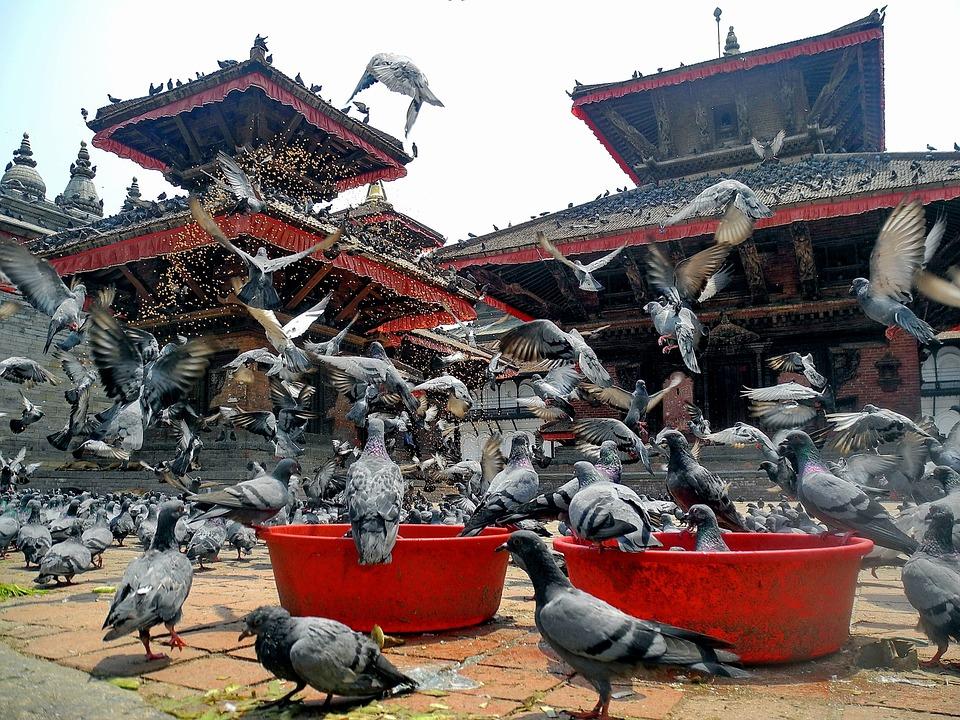 Nepal K.jpg