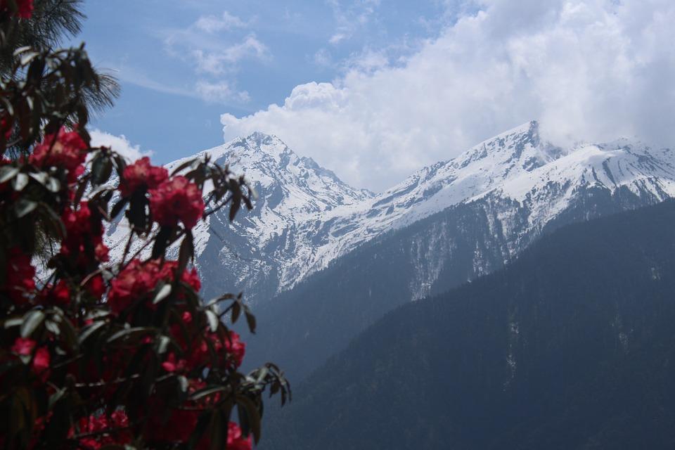 Nepal L.jpg