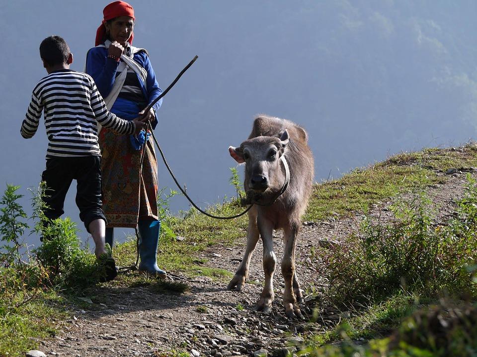 Nepal Travel 9.jpg
