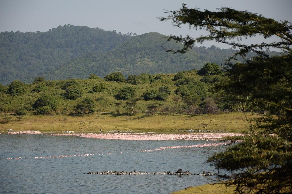 Tanzania Arusha NP.jpg