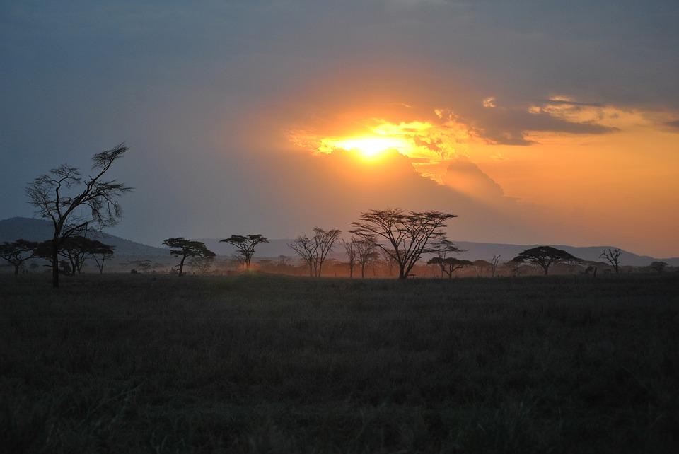 Tanzania Serengeti 2.jpg