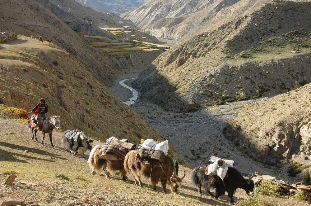 Nepal upper dolpo.jpg